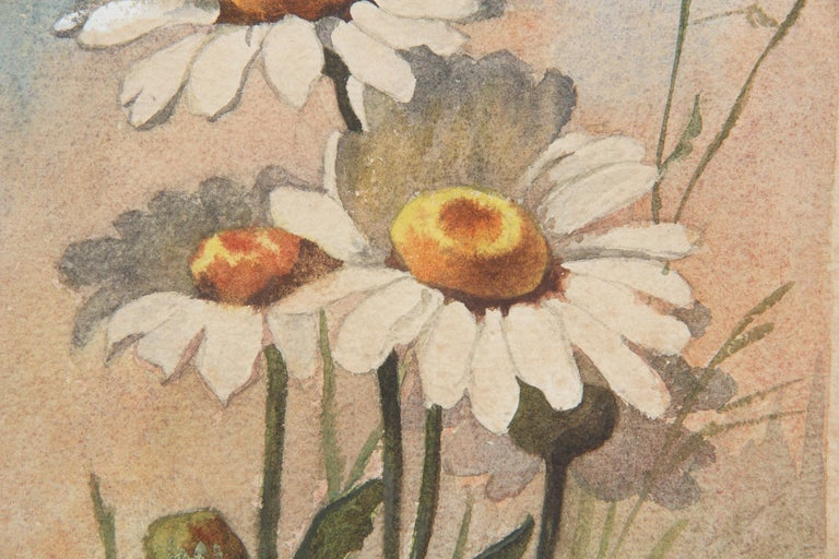 French Oak Frame with Watercolor of Daisies by R. Exbrayat, 20th Century For Sale 6