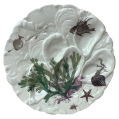 French Oyster Plate Porcelain Sealife Haviland Limoges