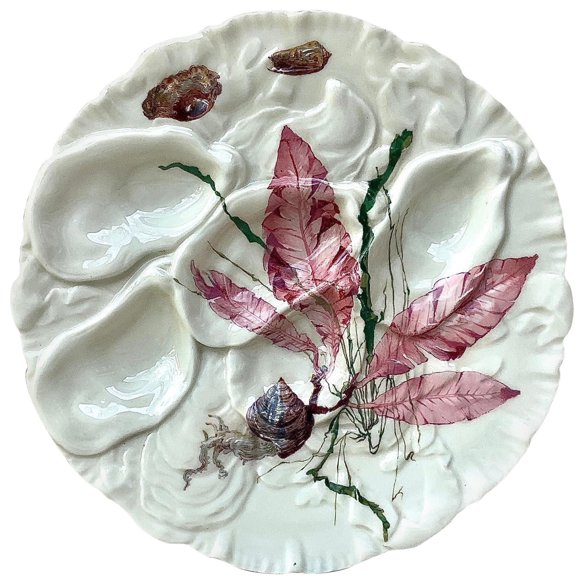 French Oyster Plate Porcelain Sealife Haviland Limoges