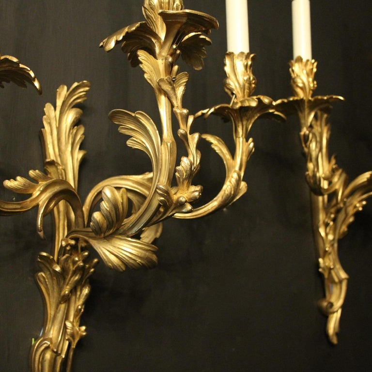 French Pair of 19th Century Gilded Bronze Triple Arm Antique Wall Sconces 4