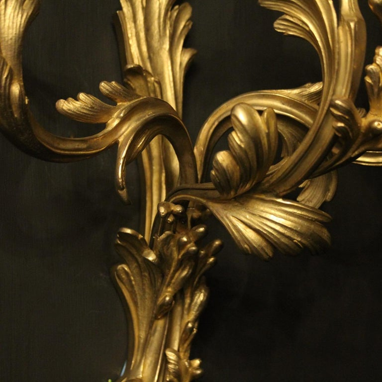 French Pair of 19th Century Gilded Bronze Triple Arm Antique Wall Sconces 6