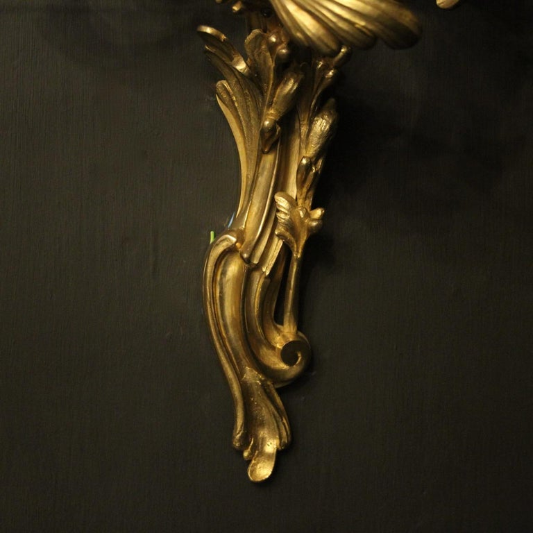 French Pair of 19th Century Gilded Bronze Triple Arm Antique Wall Sconces 8