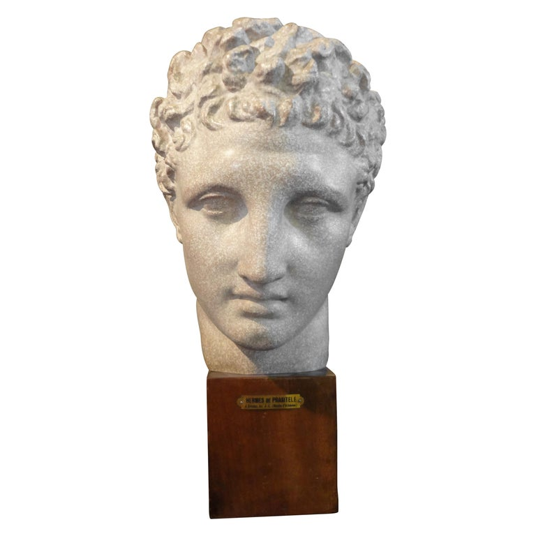 French Patinated Plaster Bust Sculpture of Hermes on Wood Base For Sale