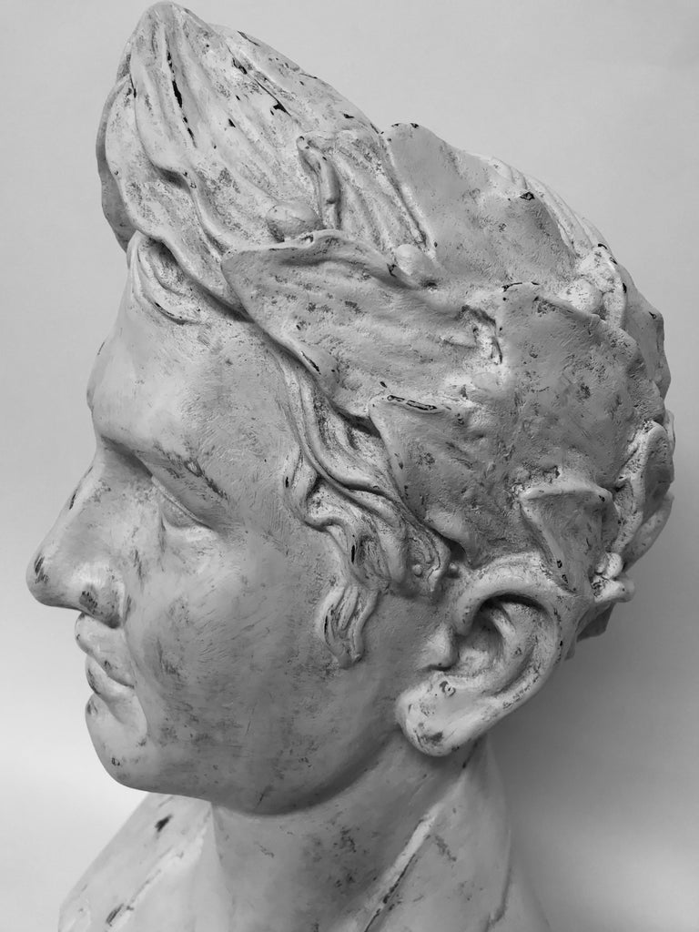 French Plaster Head of Napoleon as Emperor For Sale 2