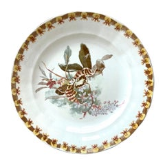 French Plate with Orchid Hippolyte Boulenger Choisy le Roi, circa 1890