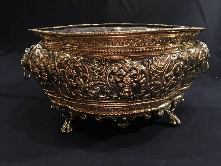 French polished brass jardiniere or planter on paw feet, 19th century.