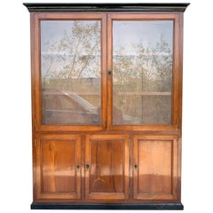 French Provincial Plantation Style Walnut Vitrine, Bookcase, 19th Century
