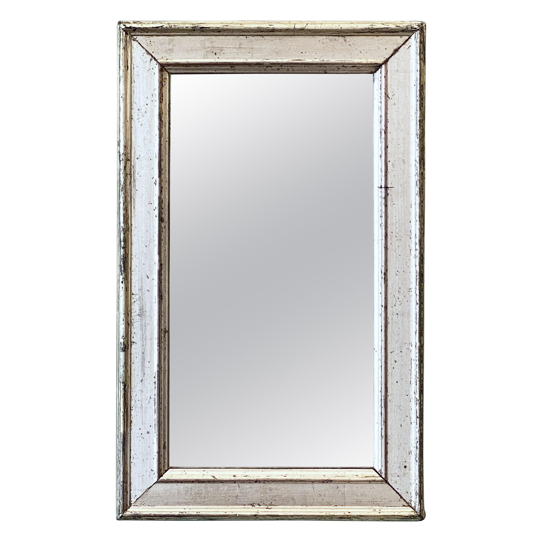 French Rectangular Silver Gilt Wall Mirror (H 19 1/2 x W 12 1/4)