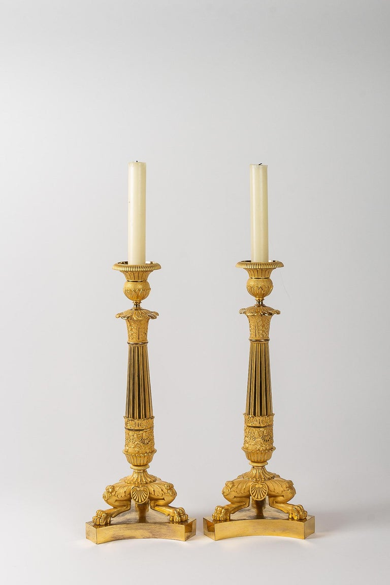 Gilt French Restoration Period, Pair of Large Bronze Candlesticks, circa 1815-1830 For Sale