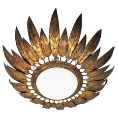 French Sunburst Flush Mount with Feathers Frame in Gilt Iron & Milk Glass, 1950s