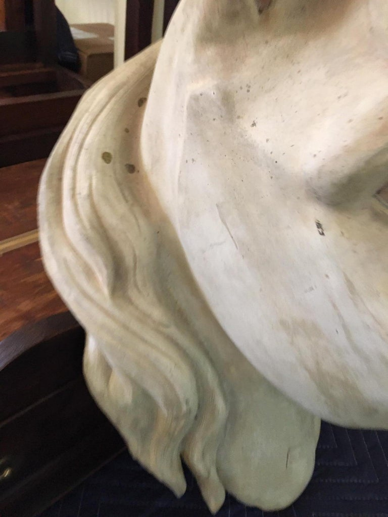 French Terracota Horse Head, 20th Century For Sale 3