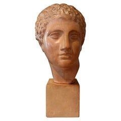 Classical Roman Busts