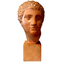 French Terracotta Bust Sculpture of a Classical Roman Male
