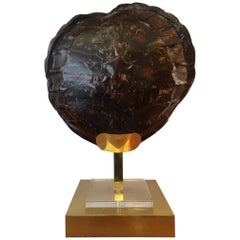 French Turtle Tortoise Shell Table Lamp, circa 1970