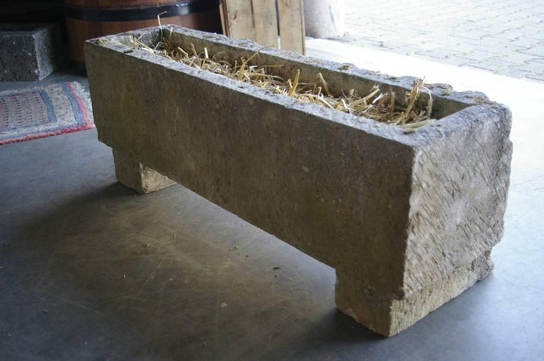 20th Century French Vintage Sandstone Planter Medieval Relief For Sale