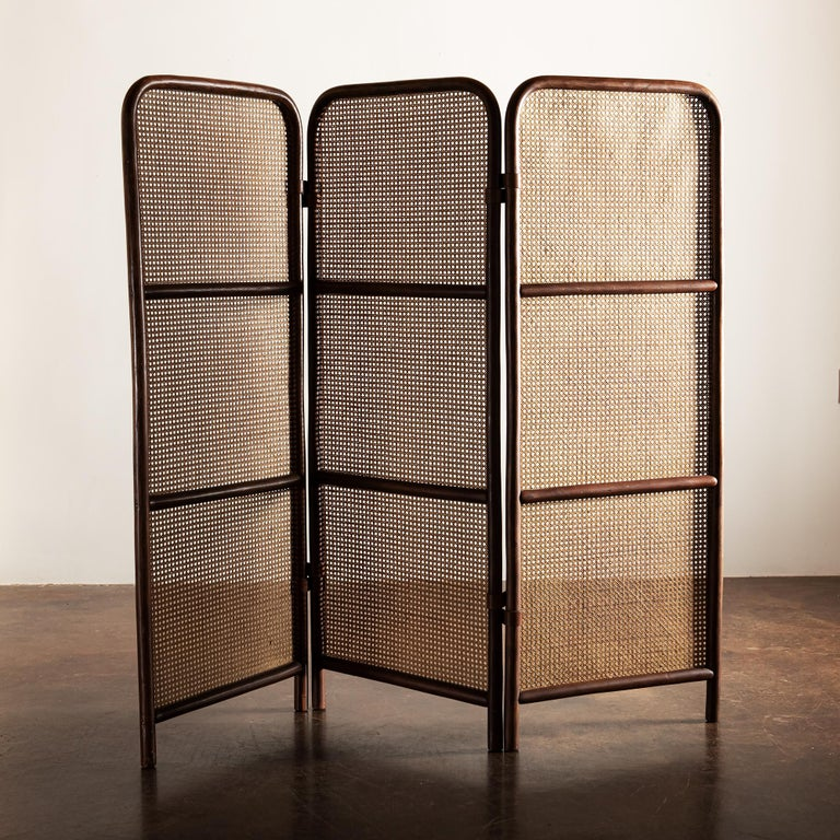 Mid-Century Modern French Wood and Cane Room Divider, 1950s For Sale