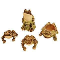 Frog Lovers Dream Set of 4 Ceramic Amphibians