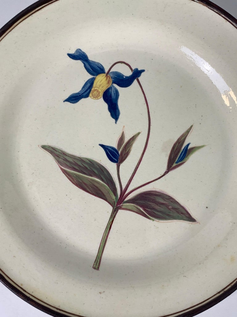 Welsh From the Collection of Mario Buatta Pair of Botanical Dishes Creamware For Sale