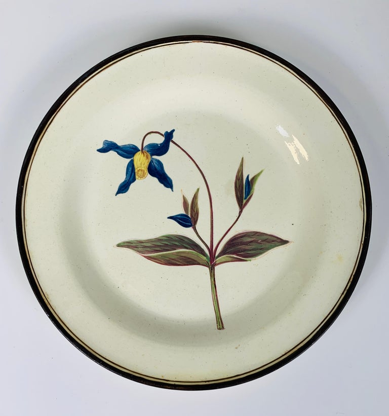 Hand-Painted From the Collection of Mario Buatta Pair of Botanical Dishes Creamware For Sale