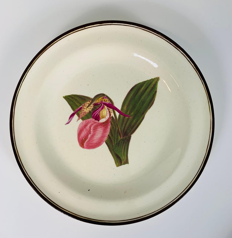 From the Collection of Mario Buatta Pair of Botanical Dishes Creamware In Excellent Condition For Sale In Katonah, NY