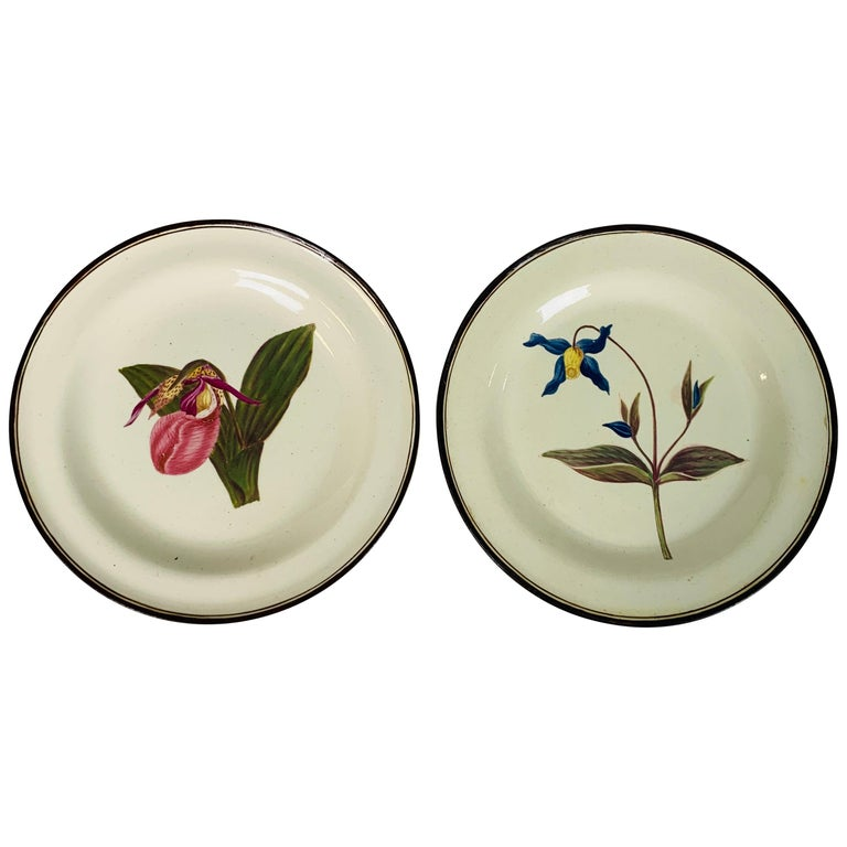 From the Collection of Mario Buatta Pair of Botanical Dishes Creamware For Sale