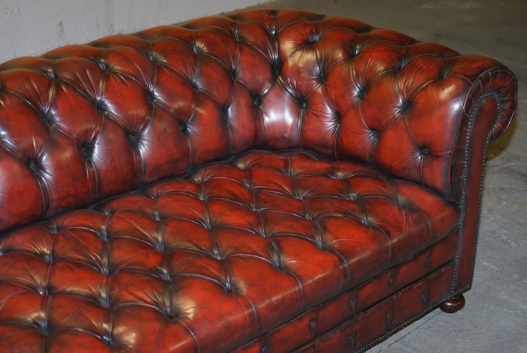 English Fully Restored Hand Dyed Oxblood Leather Fully Tufted Chesterfield Buttoned Sofa For Sale