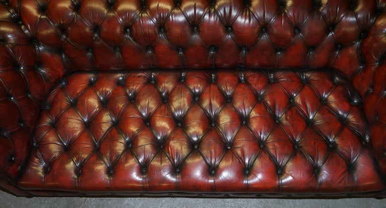 Fully Restored Hand Dyed Oxblood Leather Fully Tufted Chesterfield Buttoned Sofa In Good Condition For Sale In London, GB