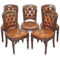 Fully Restored Suite of Five Chesterfield Brown Leather & Mahogany Dining Chairs