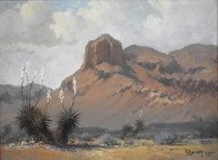 """Summer Haze""  Peak at Van Horn Texas Desert Scene"
