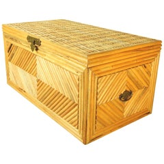 Inspired Split Reed, Rattan and Brass Chest or Coffee Table