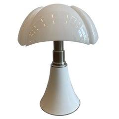"""Gae Aulenti """"Pipistrello"""" Adjustable Lamp"""