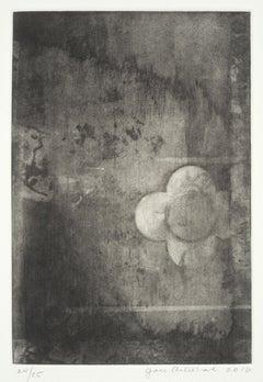 Farnese Wall #60