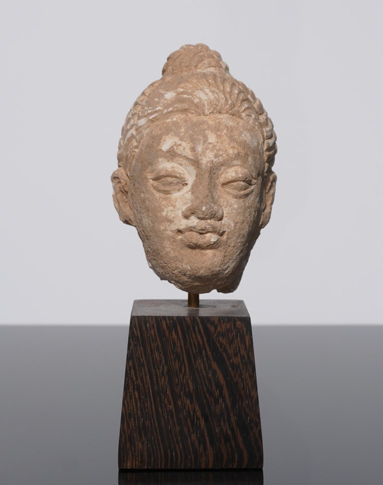 A stucco Buddha Heas from Gandhara 9100-400 AD) On wood stand: 9 inches high x 3.5 wide x 4.5 deep  The sculpting of this Buddha head is particularly fine with original painted pigments. The topknot, the Gandharan version of the ushnisha,