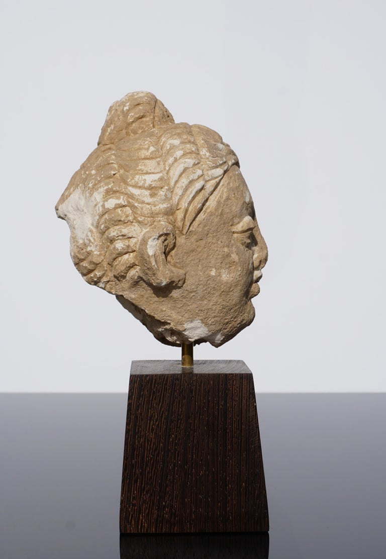 Gandhara Stucco Buddha Head '100 to 400 AD' In Good Condition For Sale In Dallas, TX