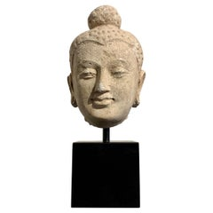 Gandharan Small Stucco Buddha Head, Style of Hadda, 5th-6th Century