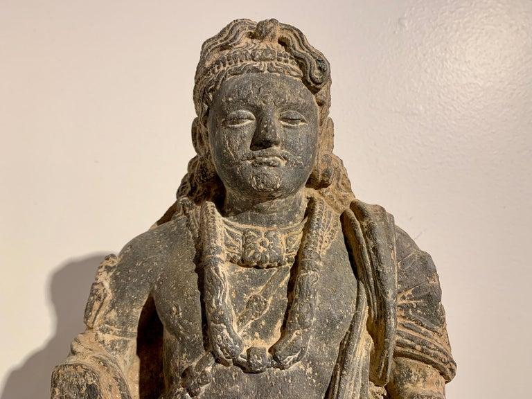 Gandharan Standing Bodhisattva Maitreya, Carved Black Schist, 2nd-4th Century For Sale 1