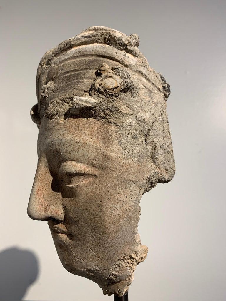 Gandharan Stucco Head of a Bodhisattva, Region of Hadda, 3rd-5th Century For Sale 5