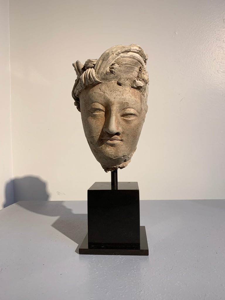 A striking Gandharan molded stucco head of a male Bodhisattva, tentatively identified as Manjushri, ancient region of Gandhara, probably Hadda or surrounding area, 3rd-5th century.  The Bodhisattva is sculpted of stucco in an idealized manner as a