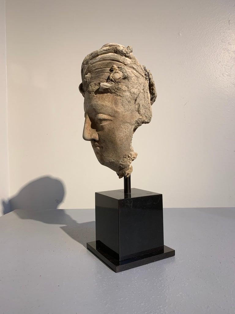 Hellenistic Gandharan Stucco Head of a Bodhisattva, Region of Hadda, 3rd-5th Century For Sale