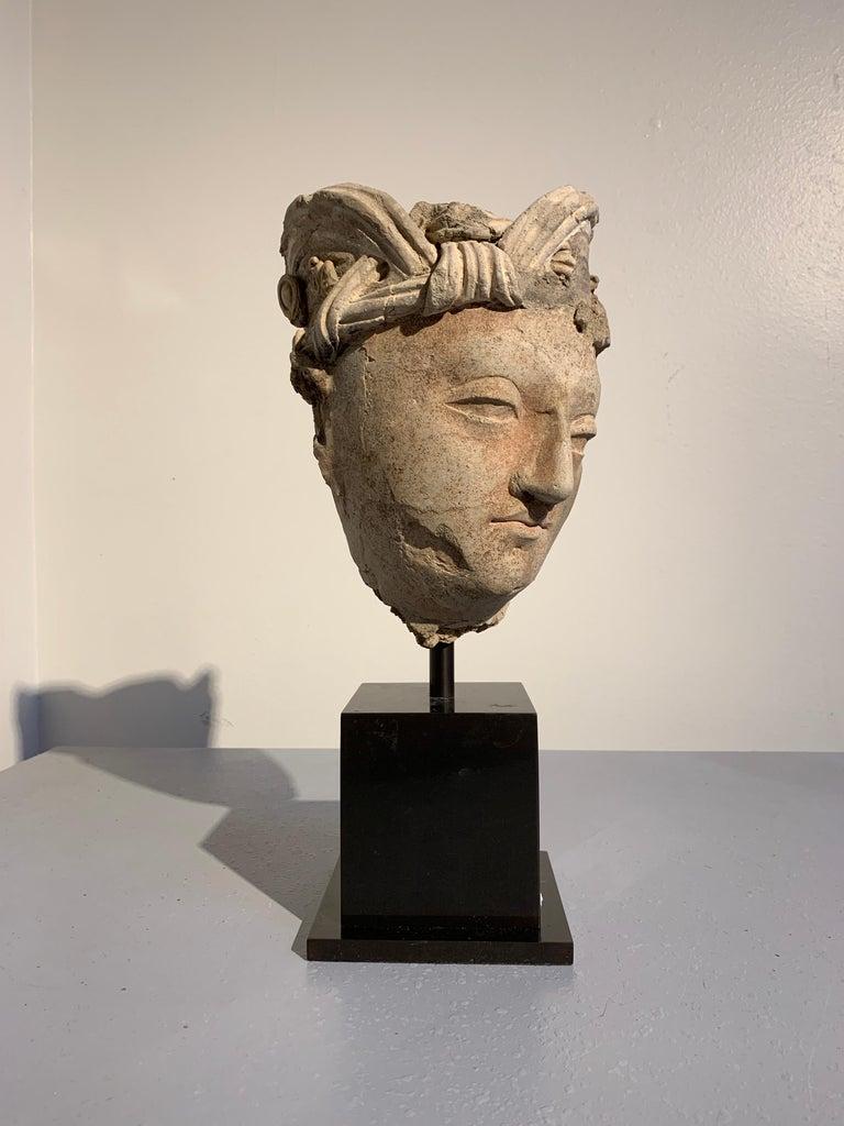 18th Century and Earlier Gandharan Stucco Head of a Bodhisattva, Region of Hadda, 3rd-5th Century For Sale