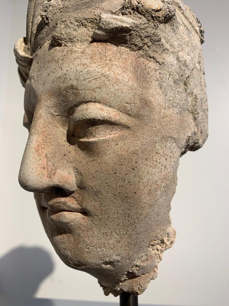 Gandharan Stucco Head of a Bodhisattva, Region of Hadda, 3rd-5th Century For Sale 2