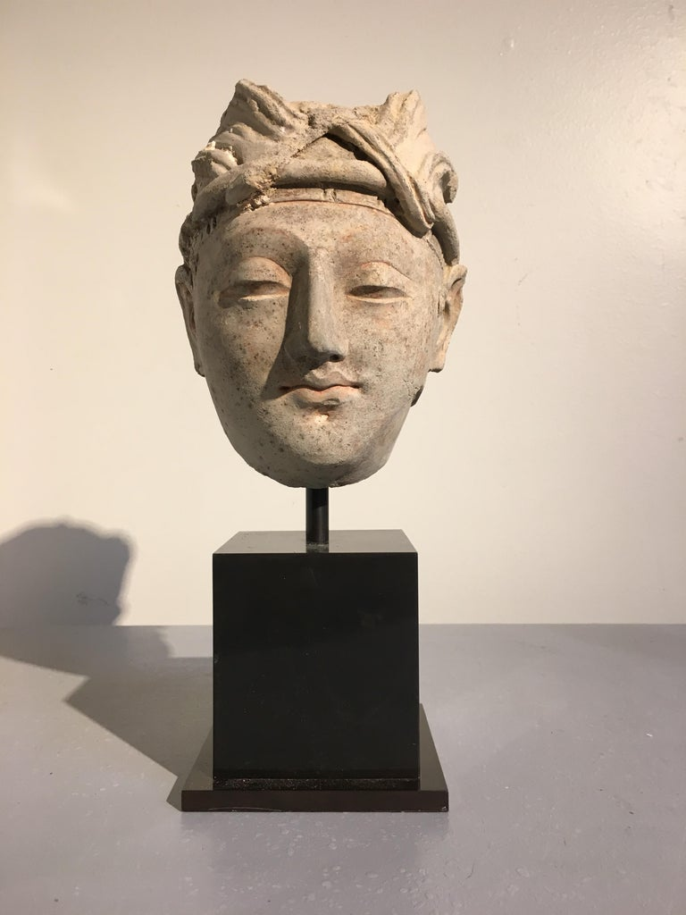 A sublime molded stucco head of a young male donor from the ancient region of Gandhara, 4th-5th century.   The youthful nobleman sculpted in an idealized manner, with soft and kind features, a benign expression on his face. He wears a pleated