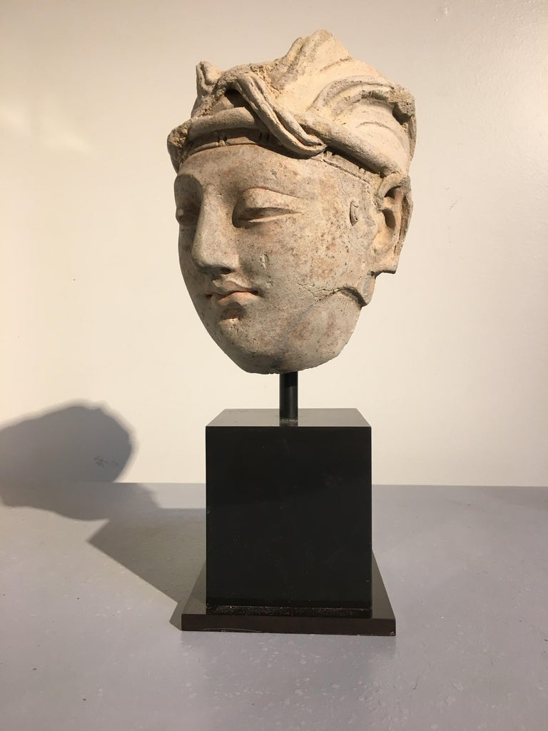 Gandharan Stucco Head of a Donor, 4th-5th Century In Good Condition For Sale In Austin, TX
