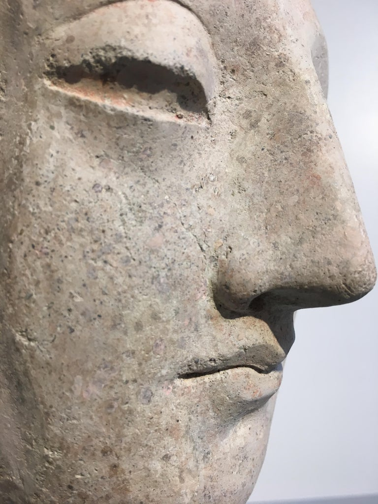 Gandharan Stucco Head of the Buddha, 3rd-5th Century For Sale 4