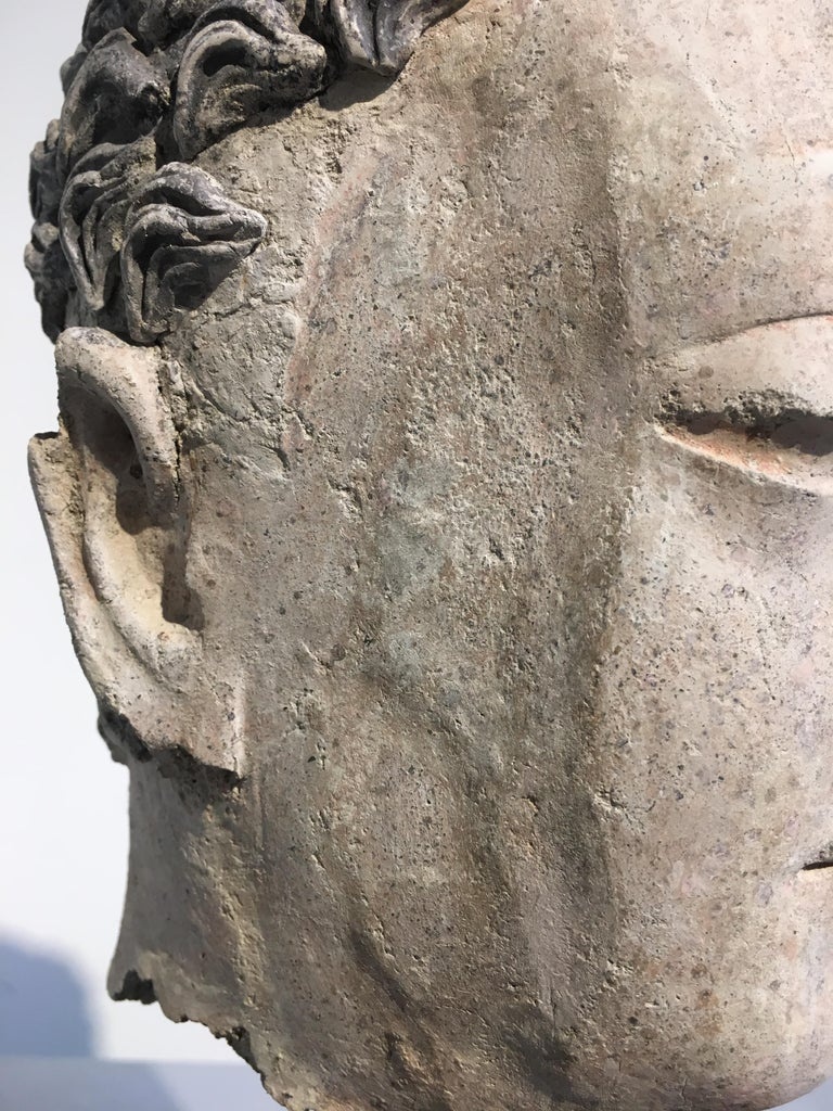 Gandharan Stucco Head of the Buddha, 3rd-5th Century For Sale 6