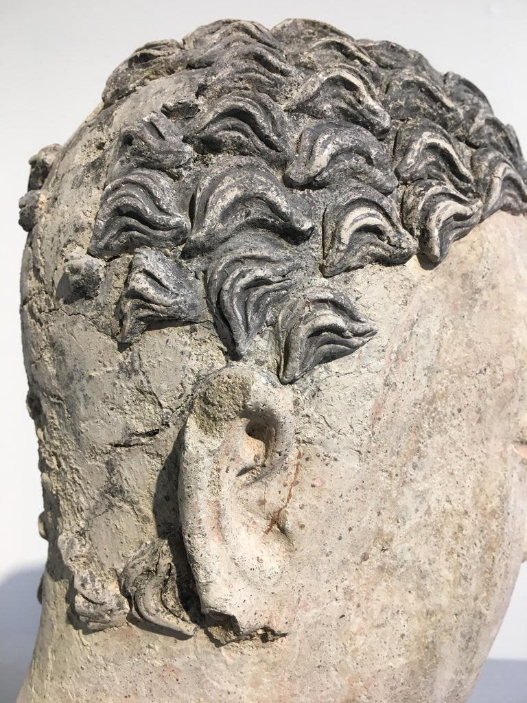 Gandharan Stucco Head of the Buddha, 3rd-5th Century For Sale 7