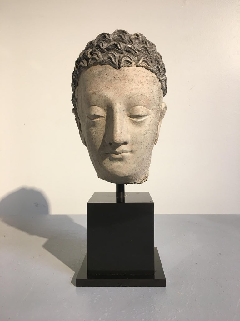 A sublime Greco-Buddhist stucco head of the Buddha, ancient region of Gandhara, circa 3rd-5th century. 