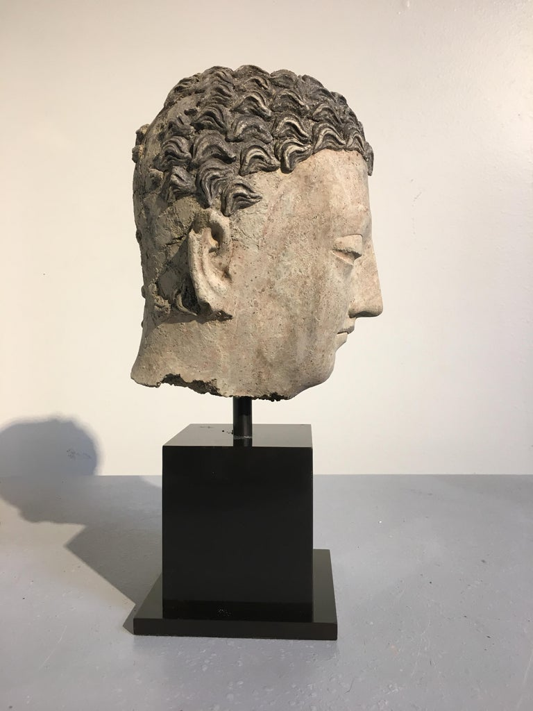 Gandharan Stucco Head of the Buddha, 3rd-5th Century In Fair Condition For Sale In Austin, TX