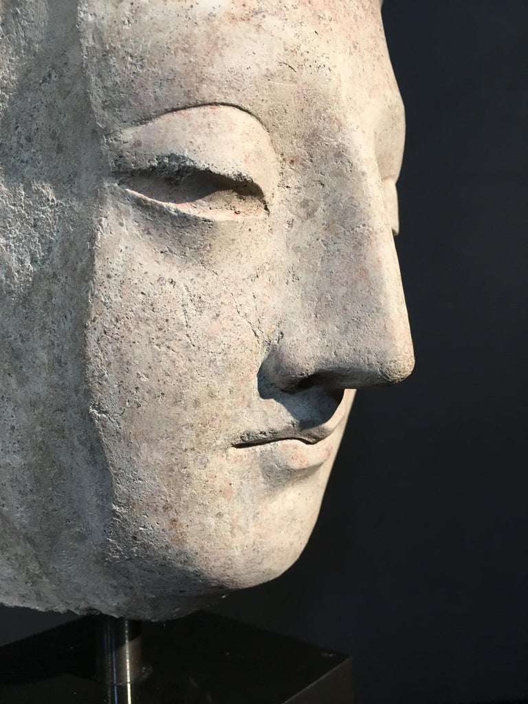 Gandharan Stucco Head of the Buddha, 3rd-5th Century For Sale 1