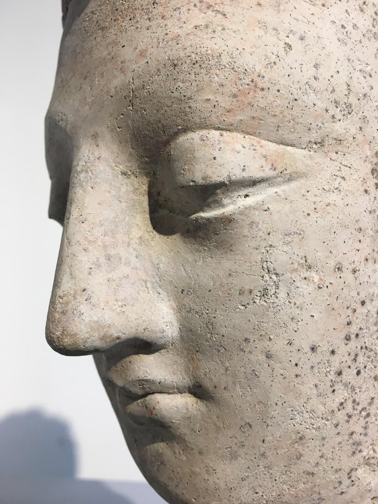 Gandharan Stucco Head of the Buddha, 3rd-5th Century For Sale 2